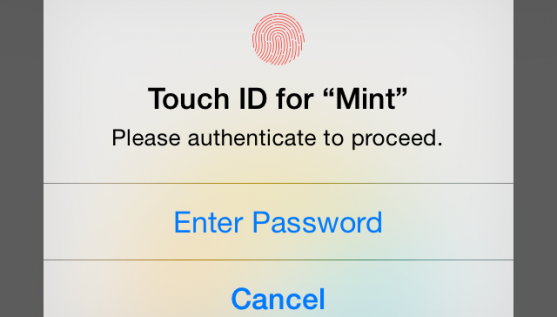 TouchID_Mint_Alert_View-copy1-557x317